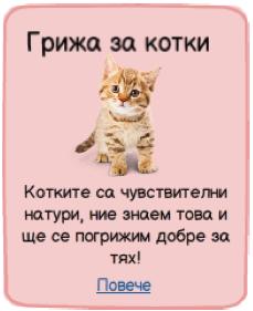 Грижа и ресане за котката от roshkovci.com